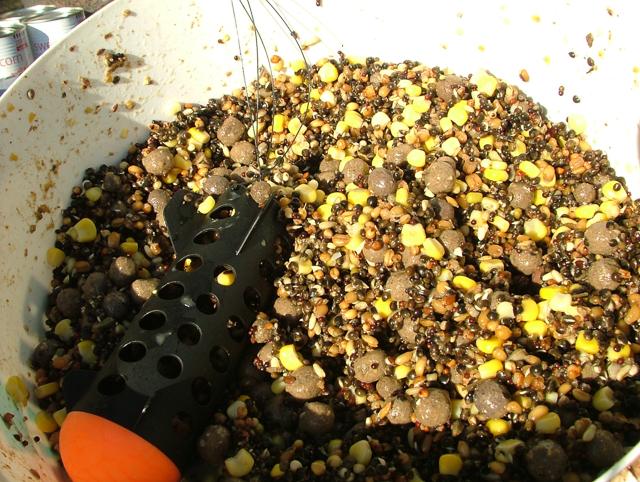 comment attirer les carpes avec un spomb
