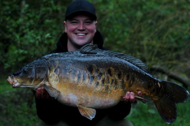 New carp stocking at the lake - Beausoleil